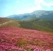 Statiuni turistice din Judetul Valcea